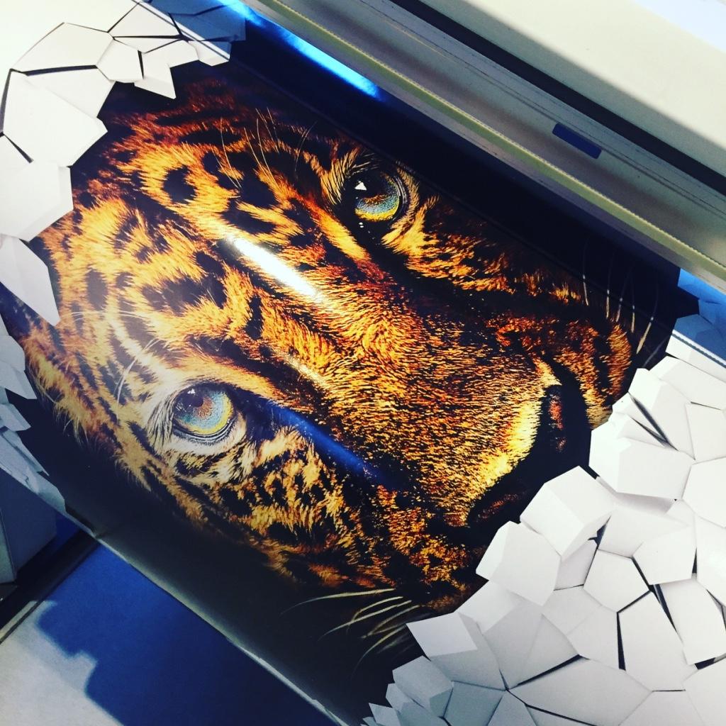 sticker imprimé pour décoration murale